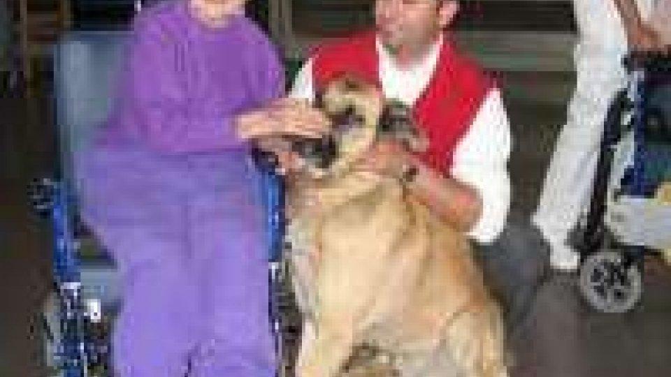 Al via la Pet therapy nelle case di riposo dell'Emilia Romagna
