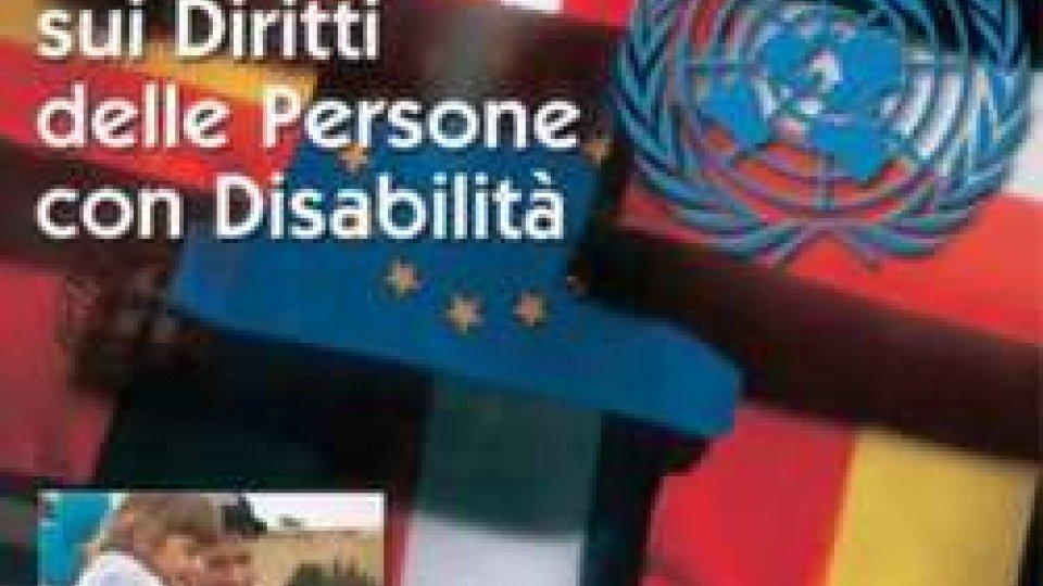 Onu disabilità