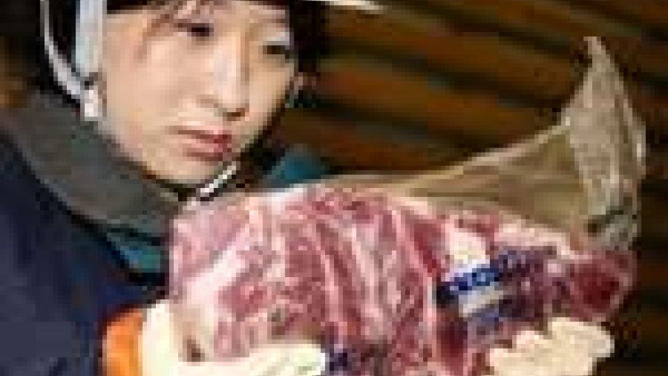 Tre quintali di carne radioattiva in Giappone