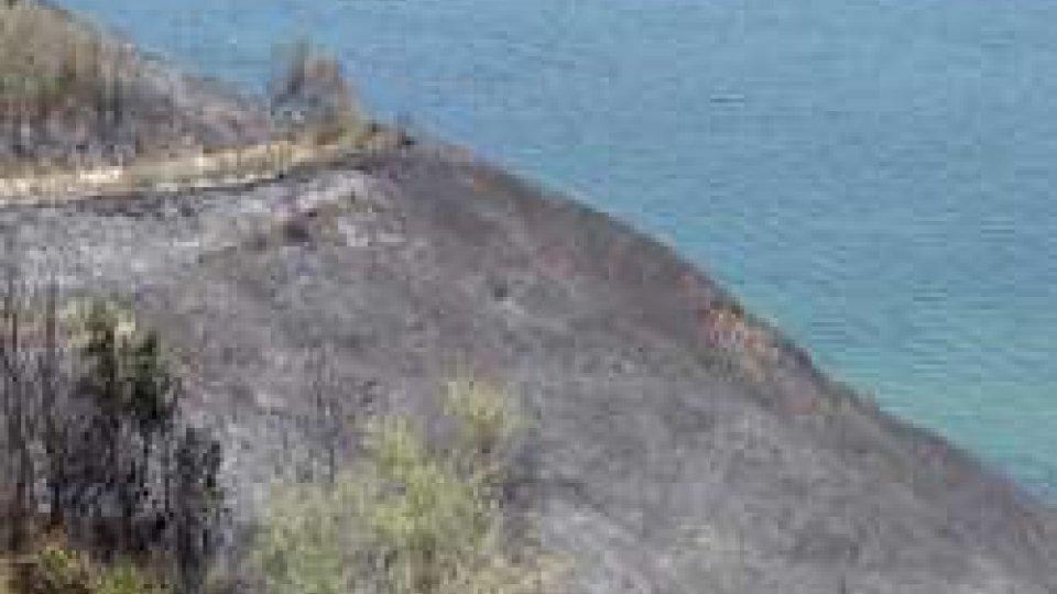 Incendio al San BartoloInferno al San Bartolo: da Vallugola a Fiorenzuola vegetazione distrutta dalle fiamme