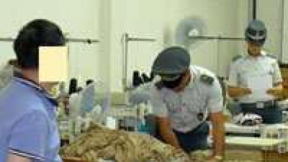 Gdf Rimini: individuato un capannone con 6 lavoratori cinesi in nero