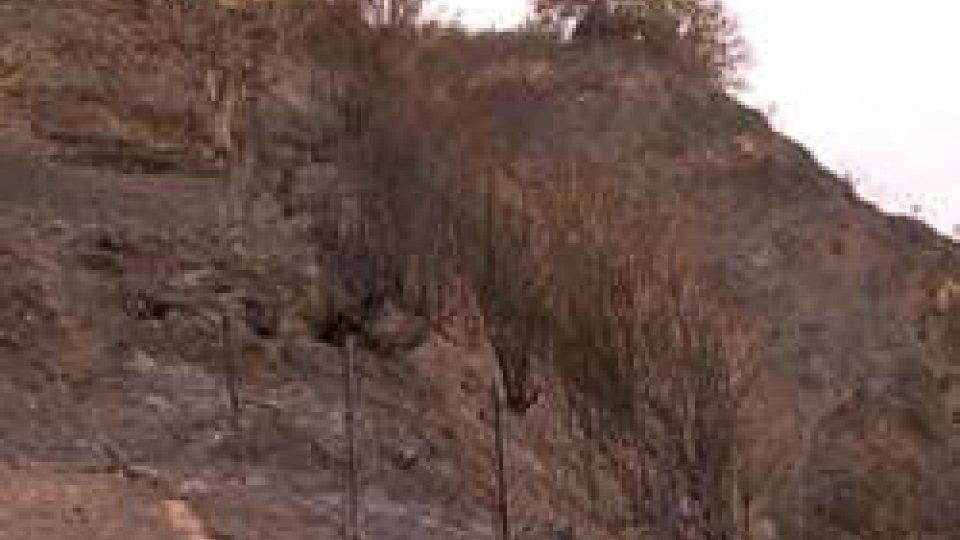 Incendio al Colle San Barotlo