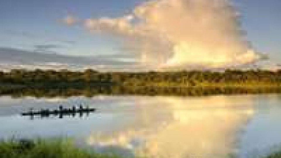 Amazzonia: al via trivellazioni in parco Yasuni, Ecuador