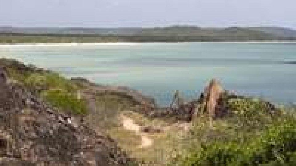 """Australia: animali sconosciuti scoperti in """"mondo perduto"""""""
