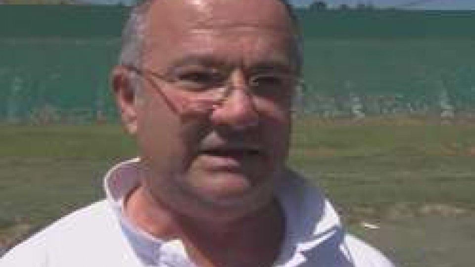 Gian Nicola BertiIntervista a Gian Nicola Berti