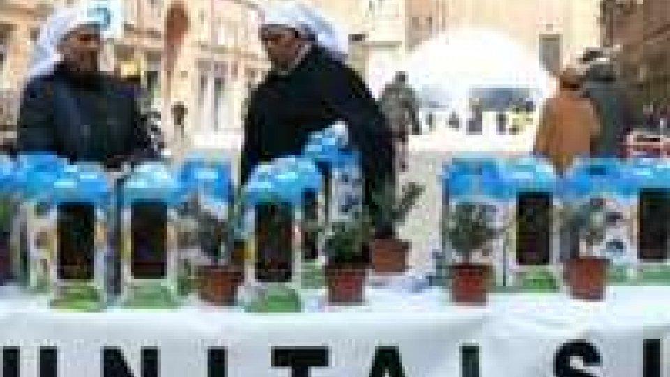 Unitalsi: piantine d'ulivo per la solidarietà