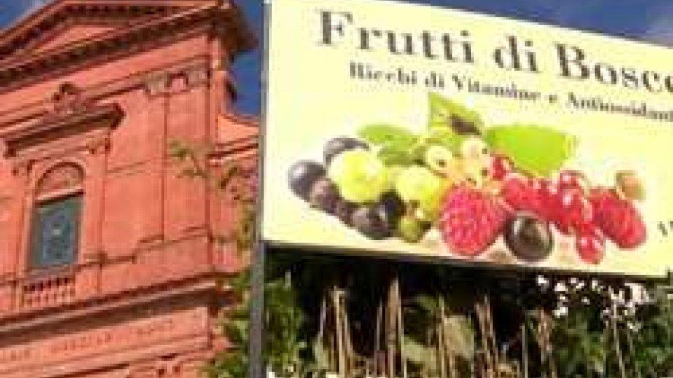 Antichi frutti mai dimenticati a PennabilliAntichi frutti mai dimenticati a Pennabilli