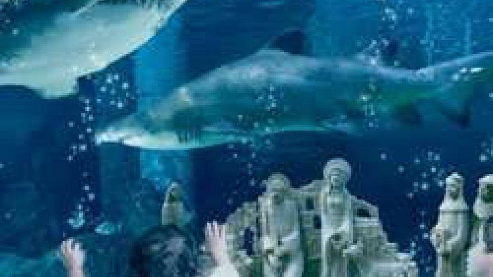 NATALE NEI PARCHI tra Presepi sott'acqua e promozioni per i bimbi