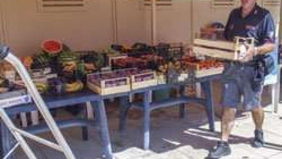 Rimini: bagnino-agricoltore scoperto da Polmare e Municipale