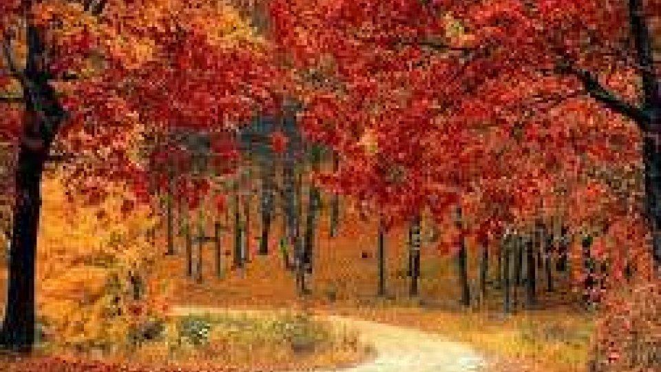 Viaggi: il Foliage in Europa