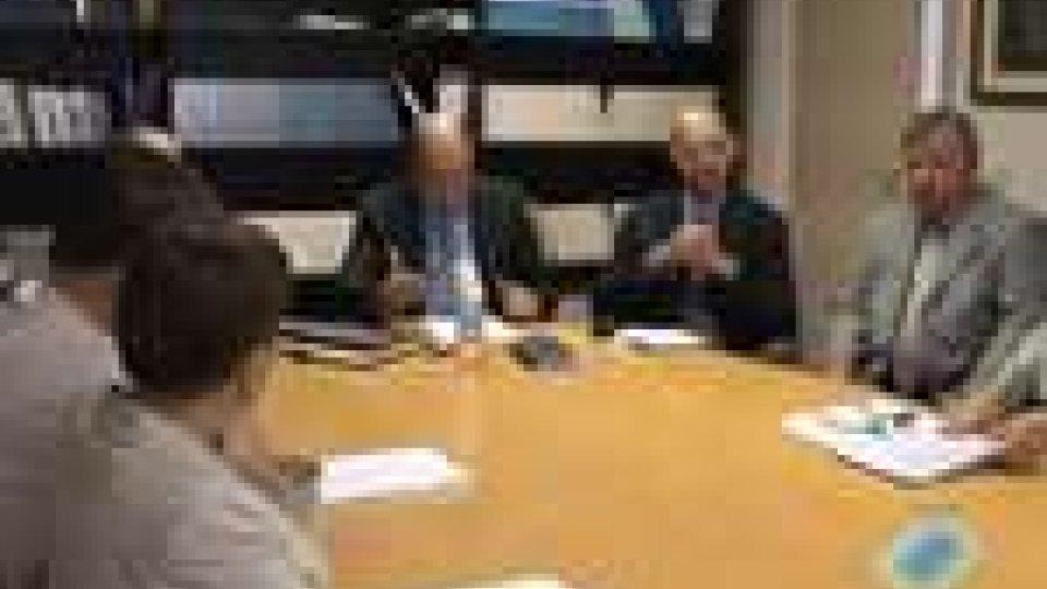 Presentato il progetto per l'adozione dei principi ONU sui diritti delle persone con disabilitàPresentato il progetto per l'adozione dei principi ONU sui diritti delle persone con disabilità