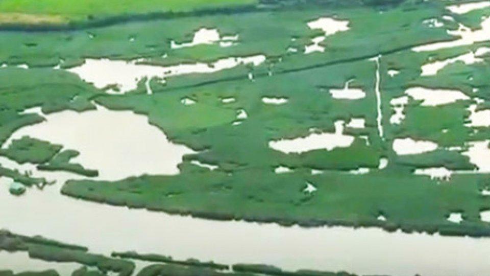 Delta del PoPremio nazionale del paesaggio: vince il progetto che valorizza il Delta del Po