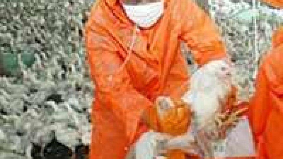 Aviaria: primo contagio umano in Cina per H10N8