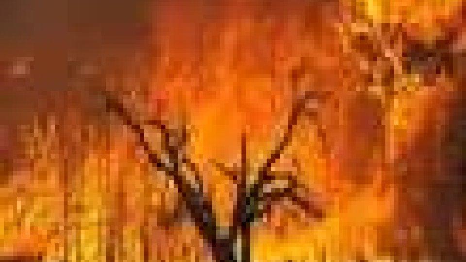 Sicilia avvolta dalle fiamme