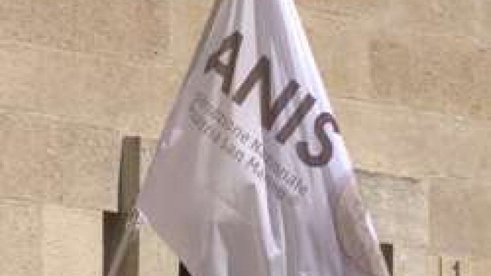 """Anis: """"Non si è mai visto un Segretario all'Industria andare contro le imprese"""""""