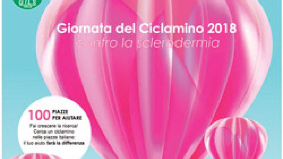 A San Marino torna la Giornata del Ciclamino