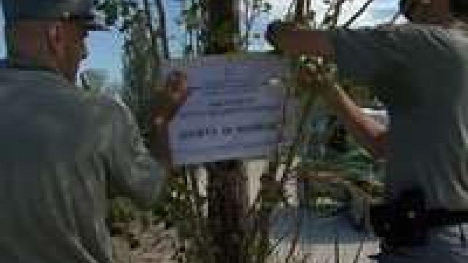"""Fiumi in Affido"", sequestrata una vasta area a Cattolica"
