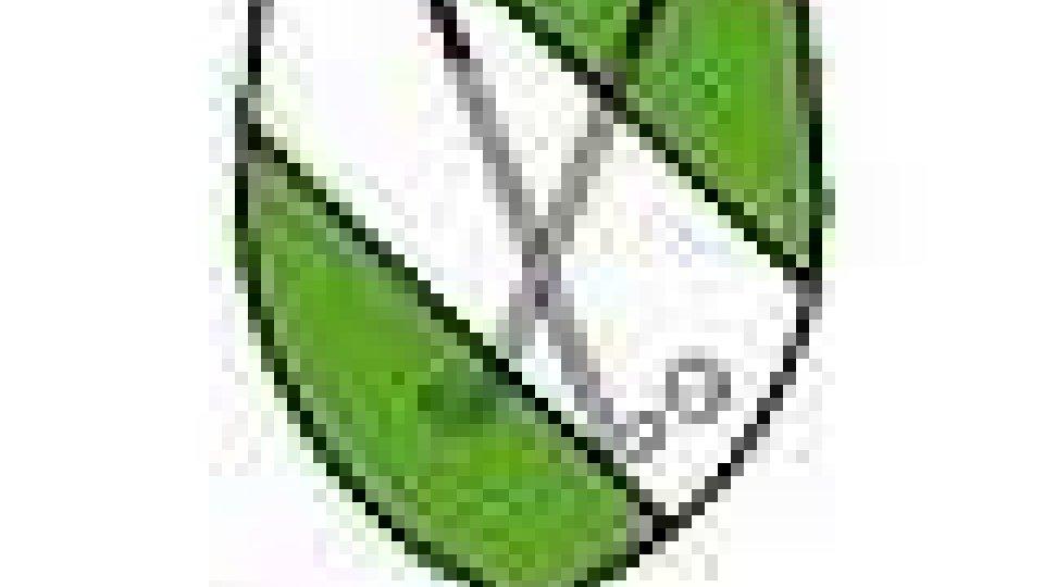 Golf 'pitch and putt': IV Open International a Cesenatico