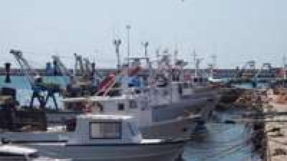Bloccata la pesca nell'Adriatico fino al 27 agosto