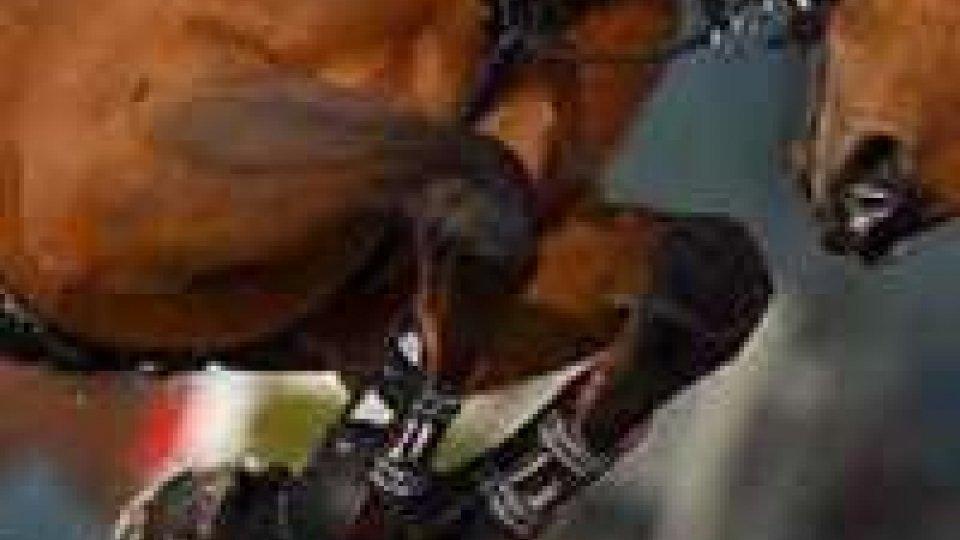 Ippica: il Gran Premio San Marino - Arezzo