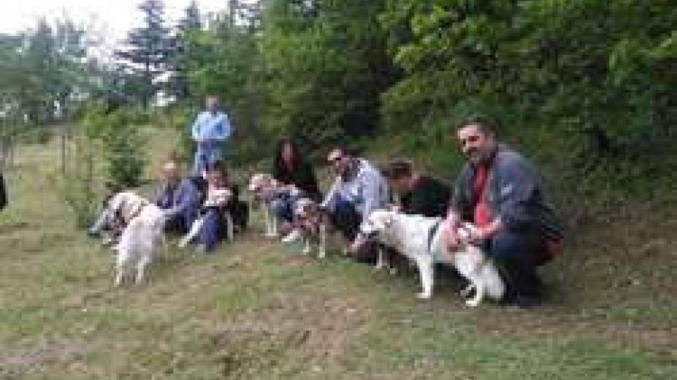 Fiorentino: inaugurata area sgambamento cani