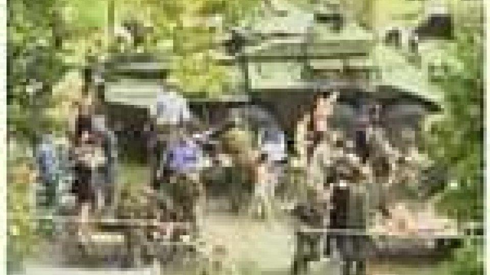 Primi bilanci delle vittime dell'Ossezia