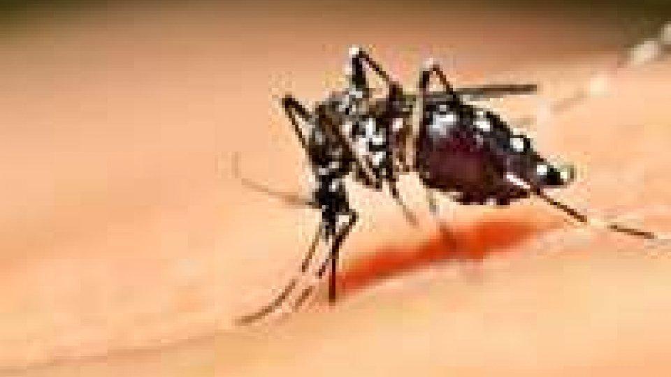 Cesena: accertato un caso di Dengue