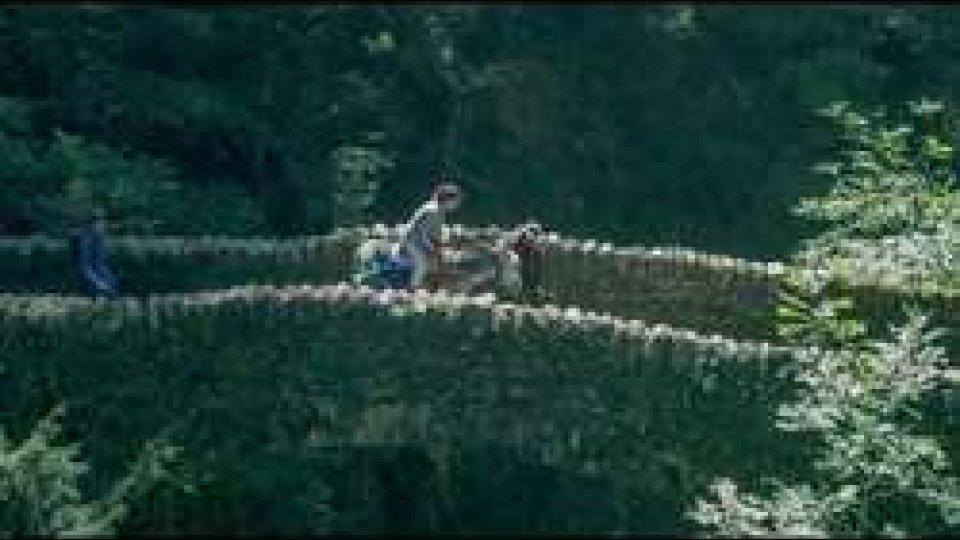 Il PARADISOIl PARADISO attende al cinema: in oltre 100 sale italiane arriva LA TERRA BUONA