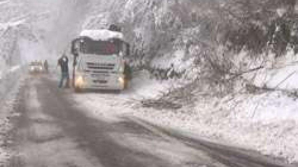 Alberi caduti a causa neve: code e disagi sulle strade