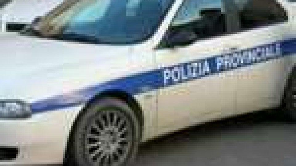 Bilancio per la Polizia provinciale di Rimini