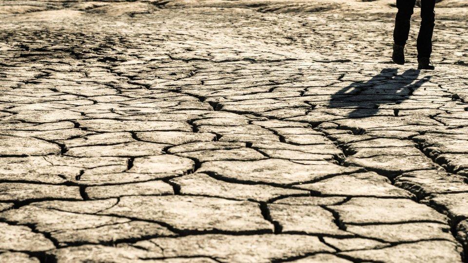 Un terreno arido
