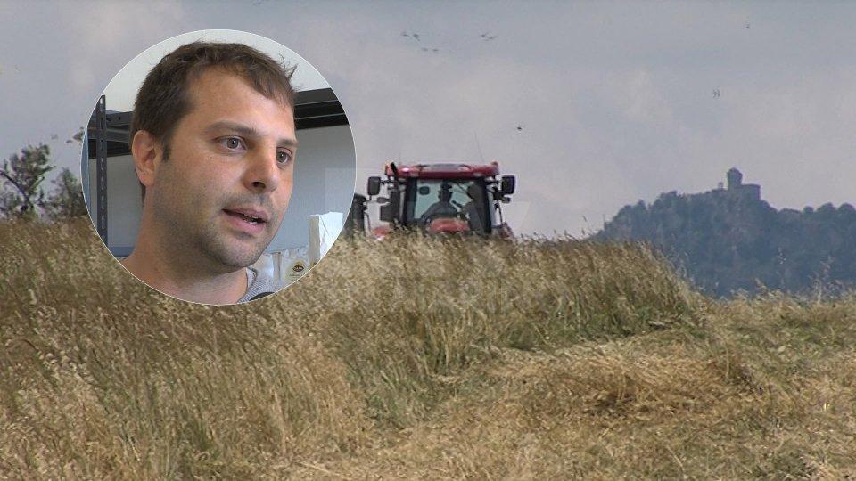 Nel tondino, Lorenzo Caninil'intervista a Lorenzo Canini, presidente dell'Associazione sammarinese produttori agricoli