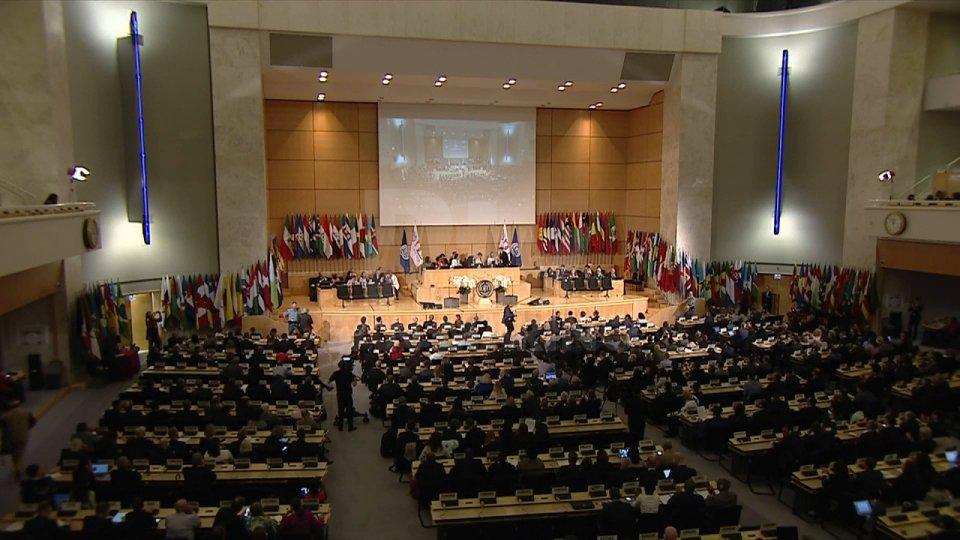 Plenaria dell'OILPlenaria dell'OIL