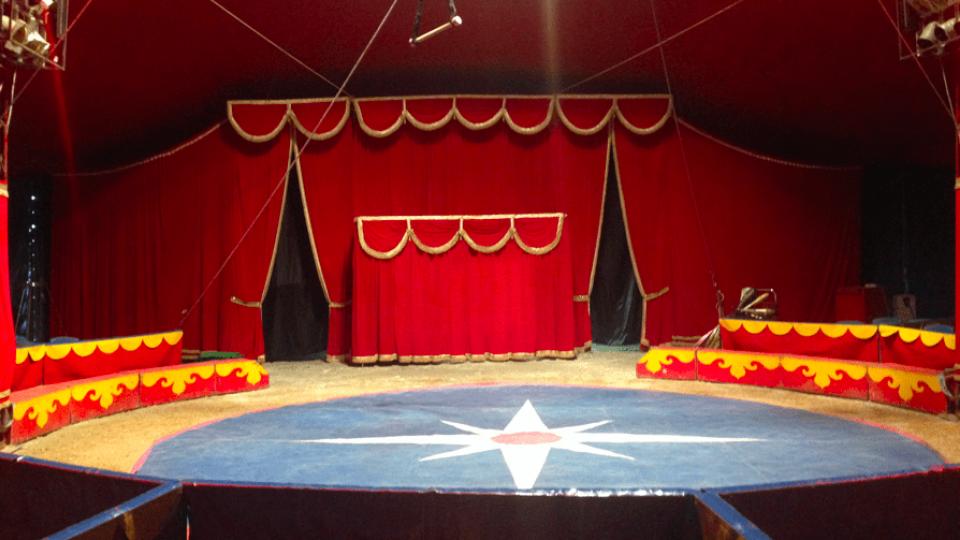 Vittoria degli animalisti: nessun animale si esibirà nel circo a San Marino
