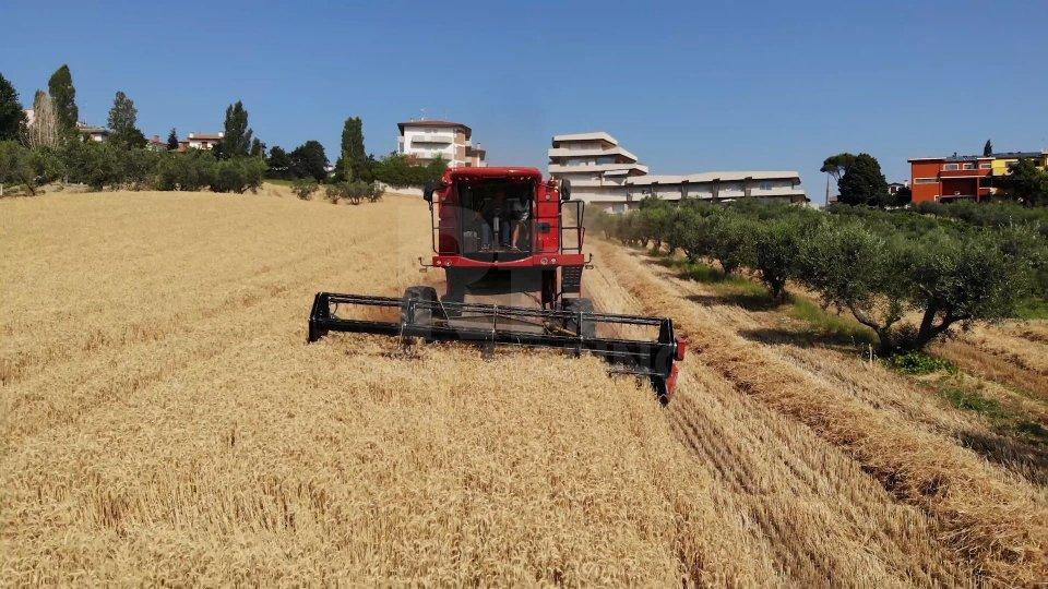 San Marino nel mercato del biologico: prodotti agricoli equiparati a quelli europei