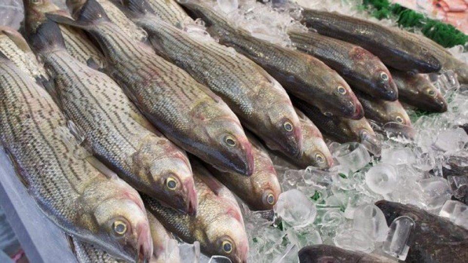 Pesce fresco, foto ansa
