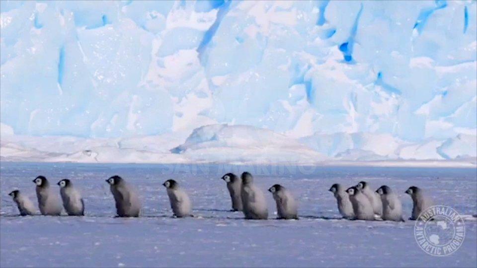L'entroterra antartico che si sta assottigliando a ritmi 5 volte più veloci rispetto a 25 anni fa