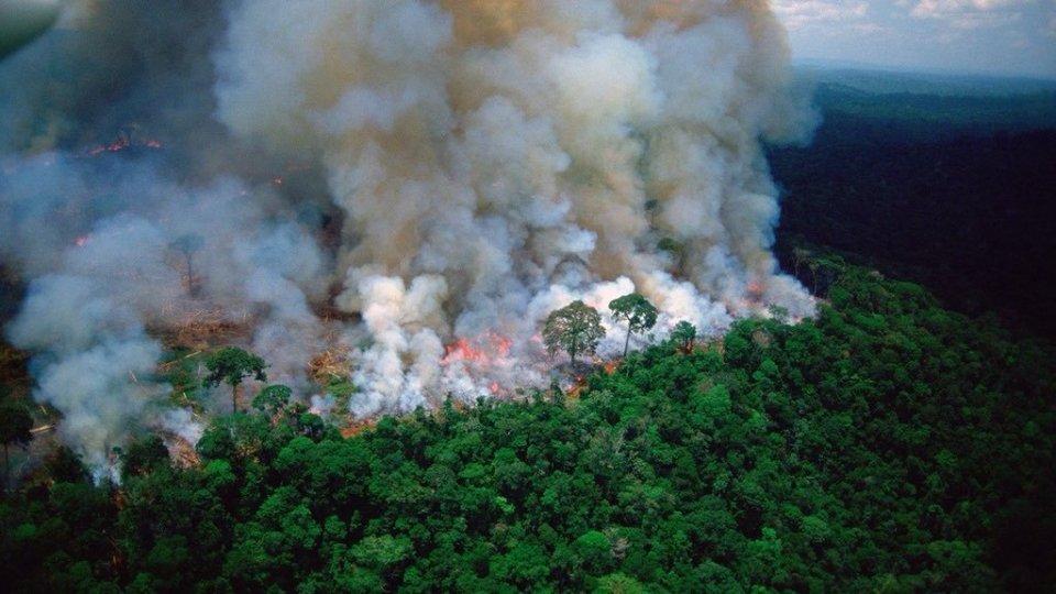 Le fiamme in Amazzonia. Foto twitter
