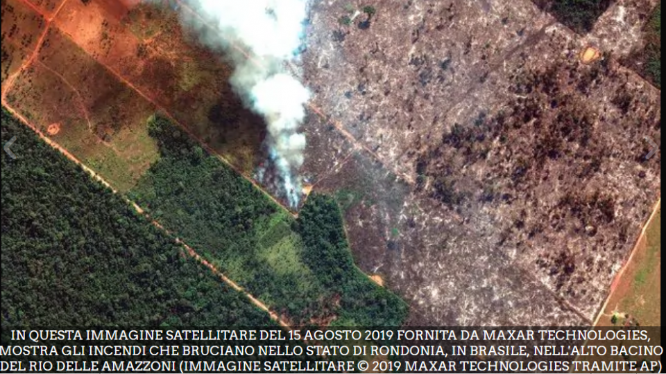 La Segreteria di Stato per gli Affari Esteri esprime solidarietà per l'Amazzonia