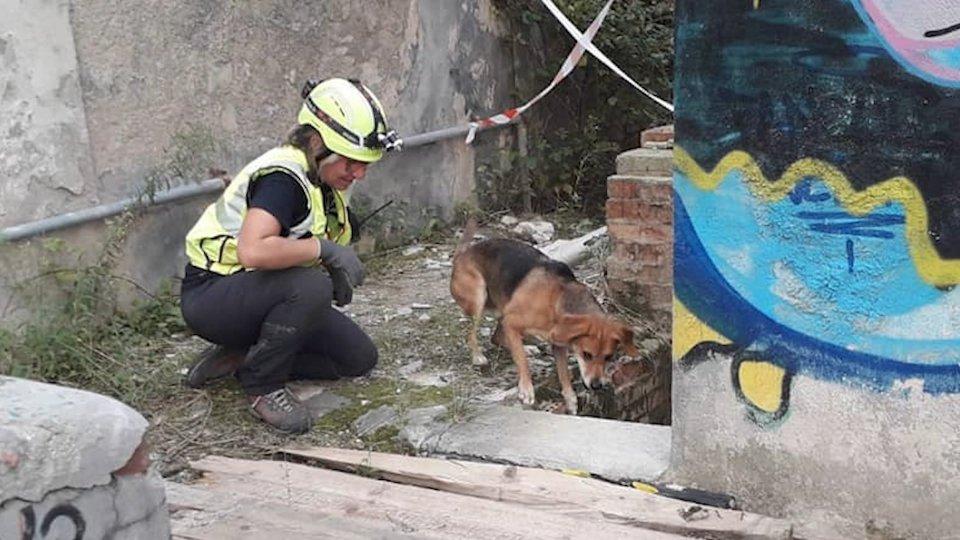Pompieri senza Frontiere: a San Marino lo stage USAR per volontari e unità cinofile