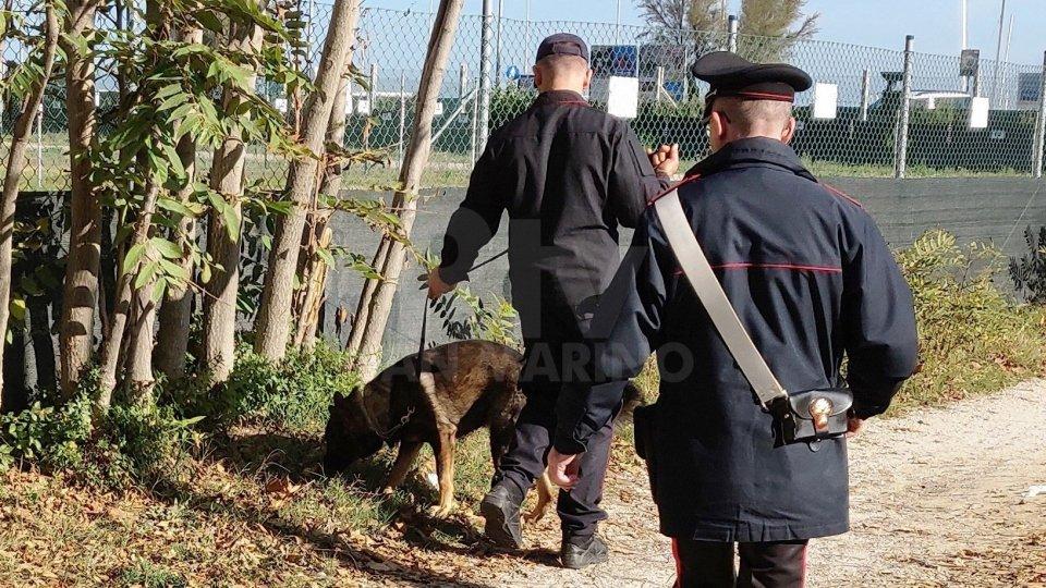 Lotta agli stupefacenti: i Carabinieri di Rimini intensificano i controlli nei parchi