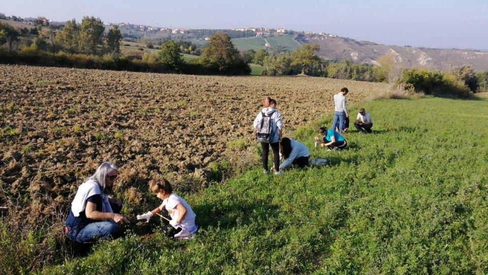"Iniziativa Fridays for Future San Marino: ""GHIANDIAMO!"""