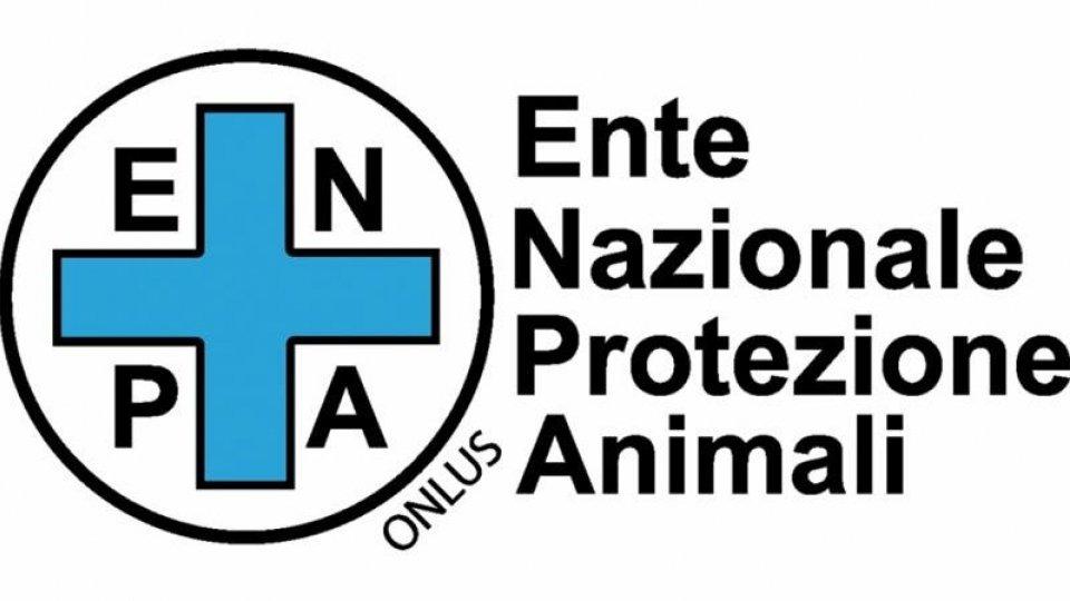L'Ente Nazionale Protezione Animali da Roma sostiene le proteste sul Titano