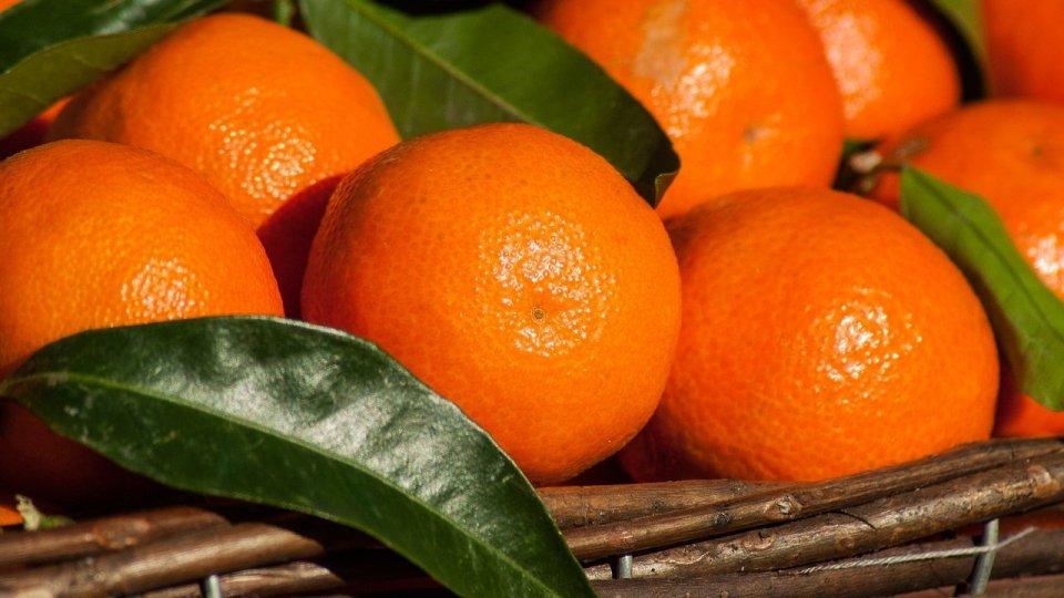 """Una volta era """"una mela al giorno"""" oggi sono Mandarini"""