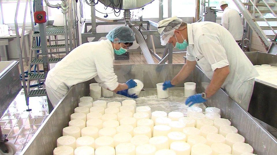 Lavoratori Centrale del Latte