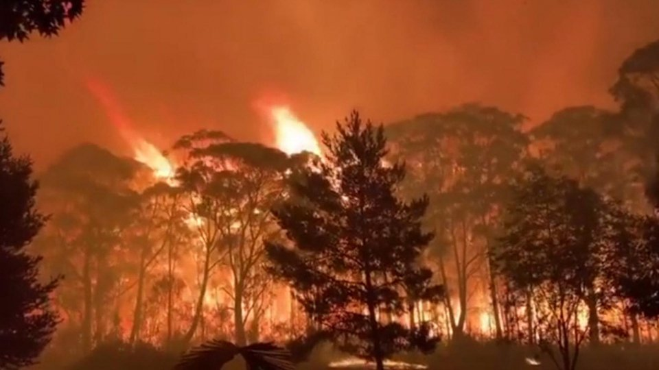 Caldo e incendi: dicembre di fuoco in Australia