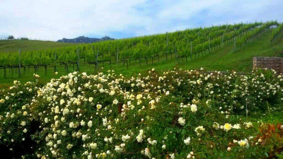 Università Contadina lancia l'appello per una maggiore indipendenza produttiva e distributiva agroalimentare a San Marino