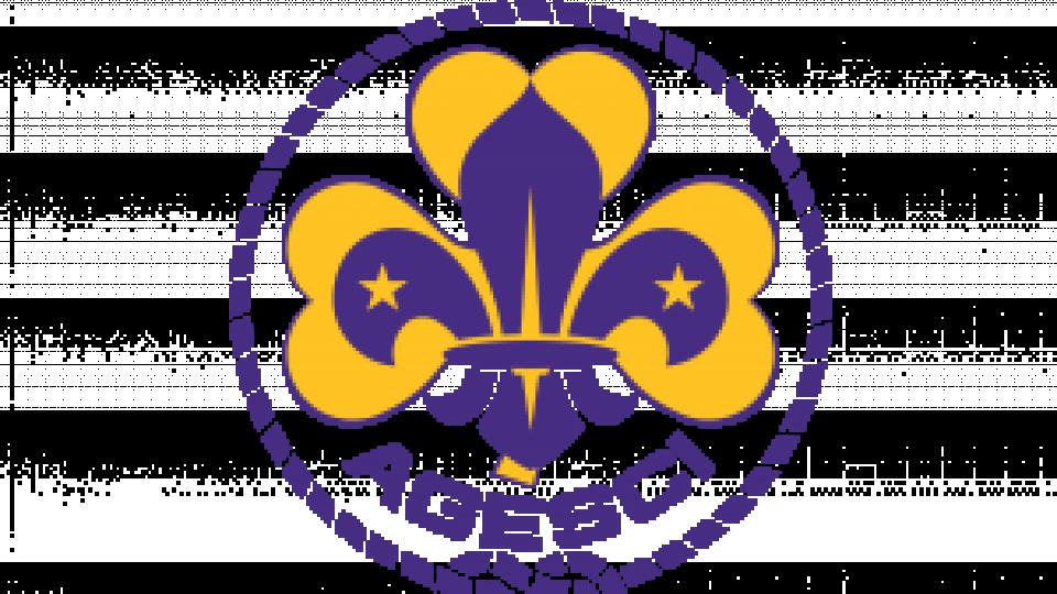 401 Scout di Agesci impegnati in servizi alla popolazione
