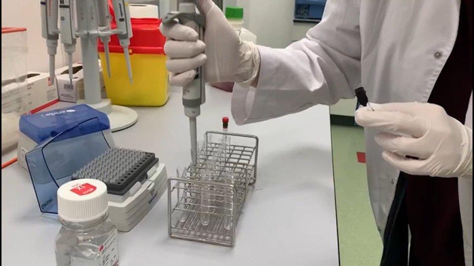 Coronavirus: ottenuti due farmaci su misura