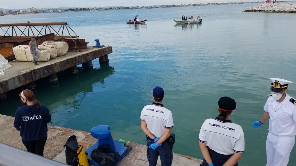 Ambiente: pulizia fondali a Rimini per Giornata Oceani